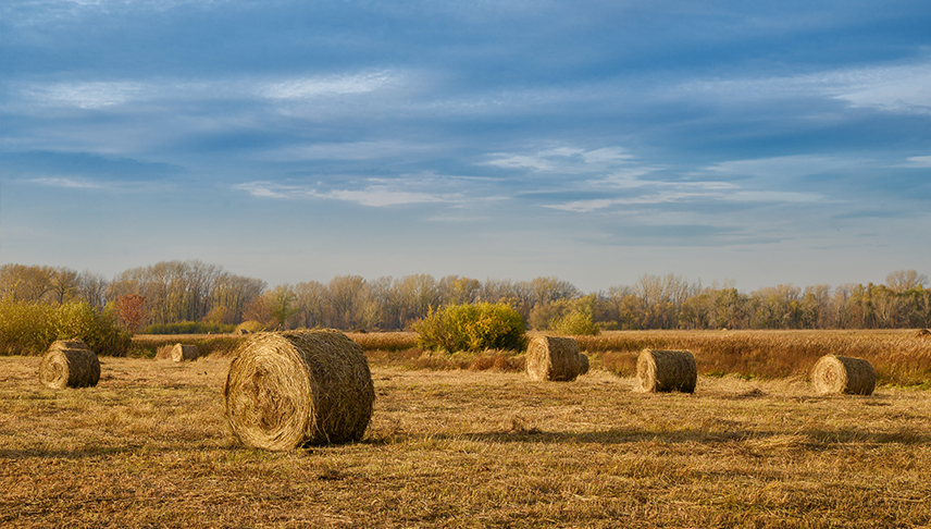 Comercial-de-Riegos-Henolaje-Henificacion-maquinaria-agricola
